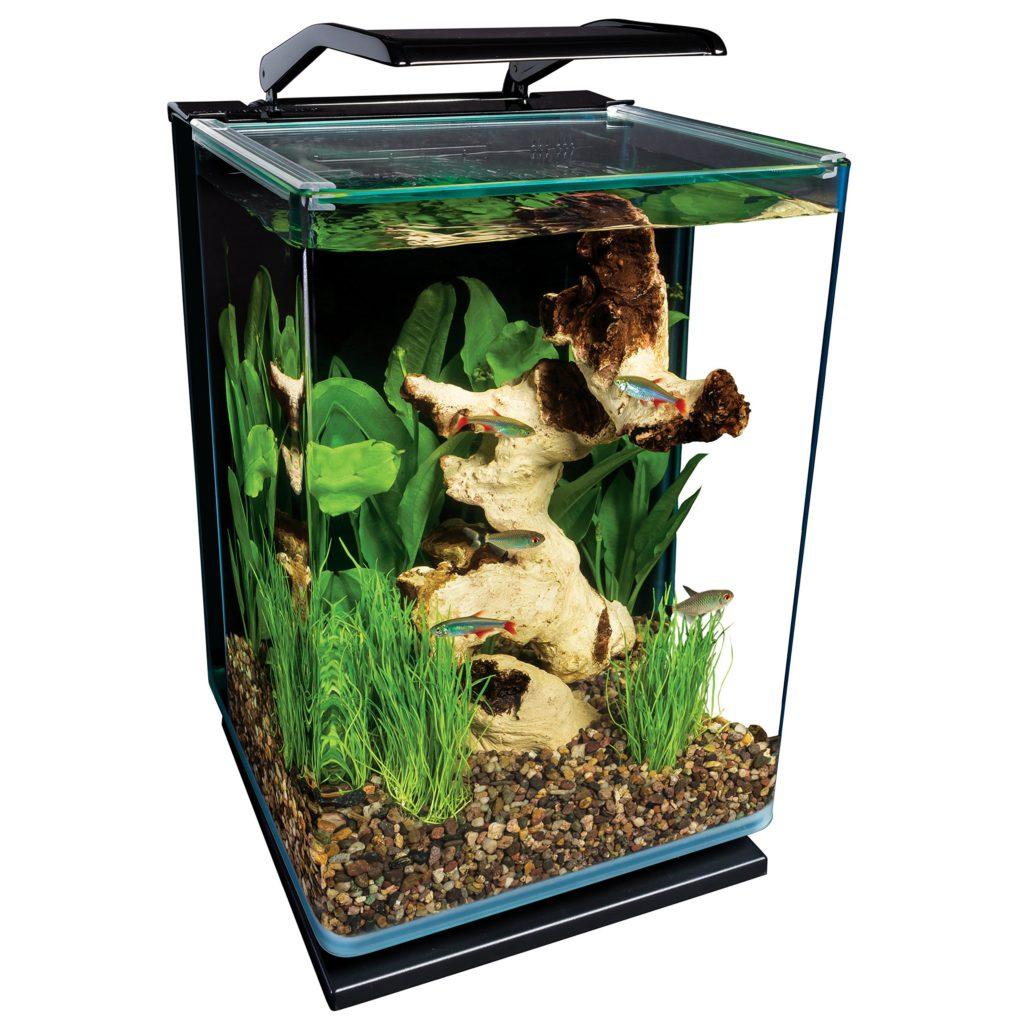 Nano akvárium otthonra